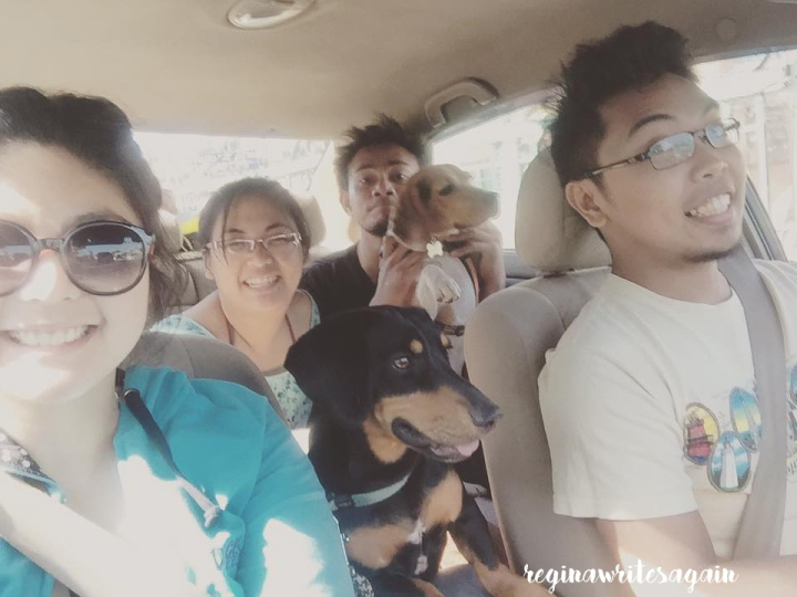 Summer escapade with the dogs! (Budget beach trip with style)