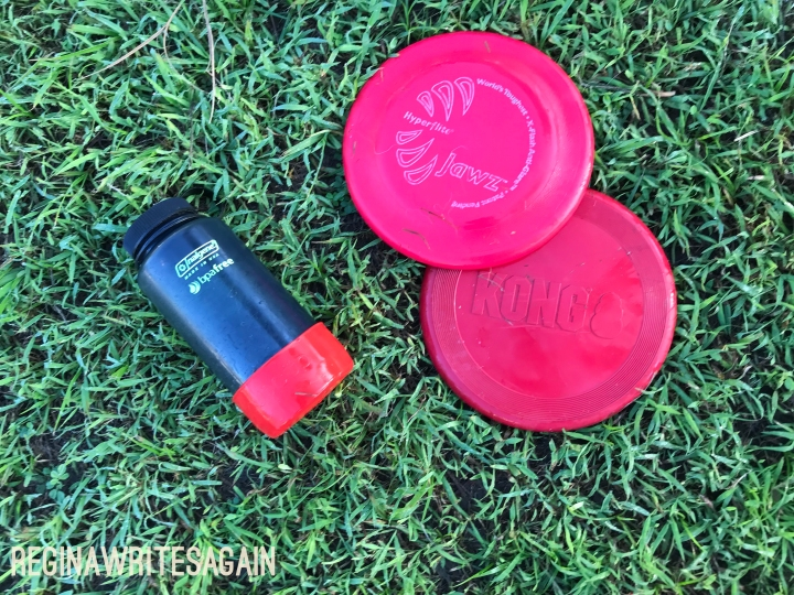 Quality products for pets: Hyperflite Jawz disc and PupCup [Review]